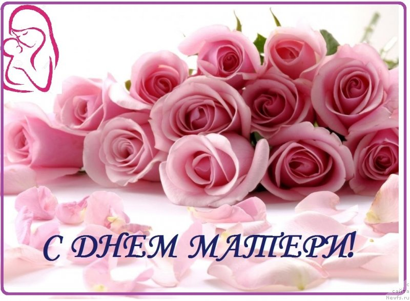 Открытка с днём рождения девушке розы 24